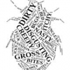 Presentation: The New Bed Bug Ordinance and You
