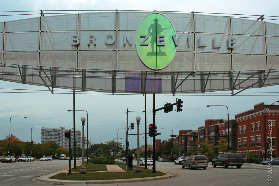 Bronzeville Residents Take A Stand Against Displacement